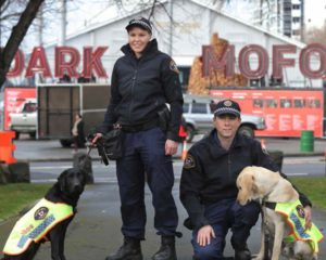 Senior Constable Anne-Marie Bennett with Police Dog Aggie and Senior Constable Jareth Anderson with Police Dog Yardley (retired) (courtesy of The Mercury Newspaper, Hobart)