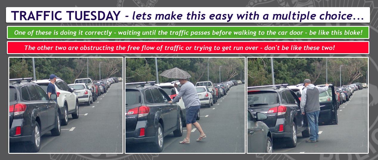 Traffic Tuesday Car Door Safety graphic