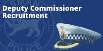 Deputy Commissioner Recruitment Newsbutton