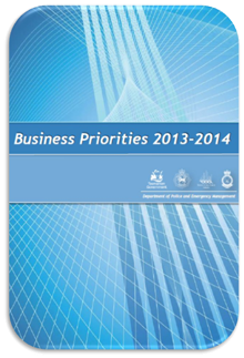 DPEM Business Priorities 2013-2014 document cover page