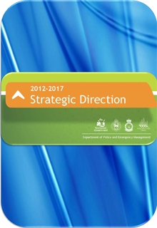 DPEM Strategic Direction 2012-2017 document cover page.
