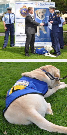 Tasmania Police Charity Trust cheque handover to Royal Guide Dogs Tasmania. Acting Commissioner Darren Hine is pictured handing over a cheque to the Royal Guide Dogs Chief Executive Officer, Dan English.